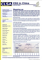 CLSA Report -Mopping up