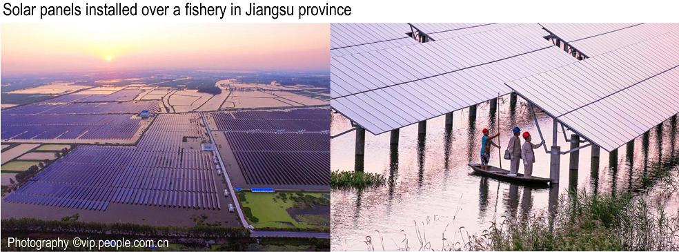 Solar panels over fishery in Jiangsu-China