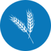 ChinaWaterRisk_Agriculture-blue