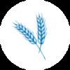 Sample circle icon